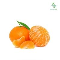 Ароматизатор Mandarin