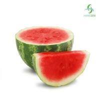 Ароматизатор Watermelon