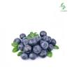 Ароматизатор Blueberry