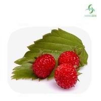 Ароматизатор Wild Strawberry