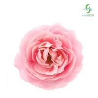 Ароматизатор Rose