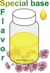 Специальный базовый аромат (Special base flavor)